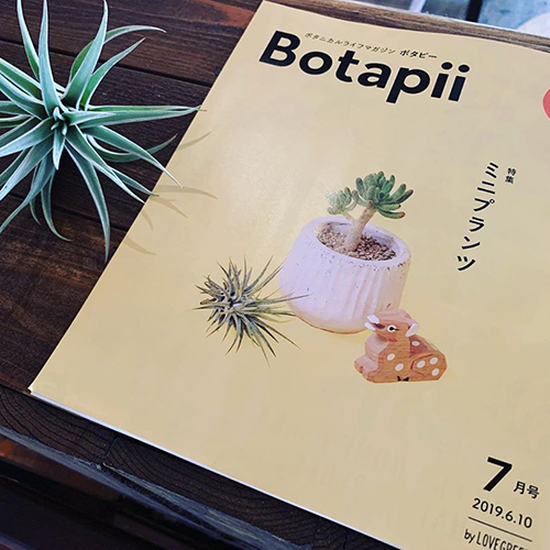 Botapii 7月号も届きました