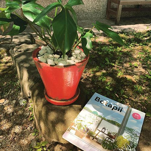 Botapii 10月号の特集は「庭とベランダ」。Botapiiはグリーンに関する情報が色々載ったフリーペーパー。clay店内に置いてありますので、どうぞお持ち帰りくださいね。